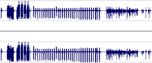 cut/paste computer music